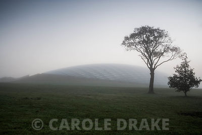 The elegant form of the Great Glasshouse emerges from fog at sunrise on a misty autumn morning. National Botanic Garden of Wales, Middleton Hall, Carmarthenshire, Wales, UK