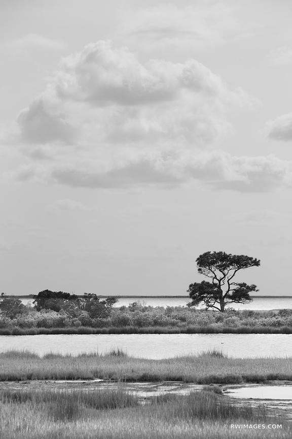CHINCOTEAGUE BAY ASSATEAGUE ISLAND NATIONAL SEASHORE MARYLAND BLACK AND WHITE VERTICAL