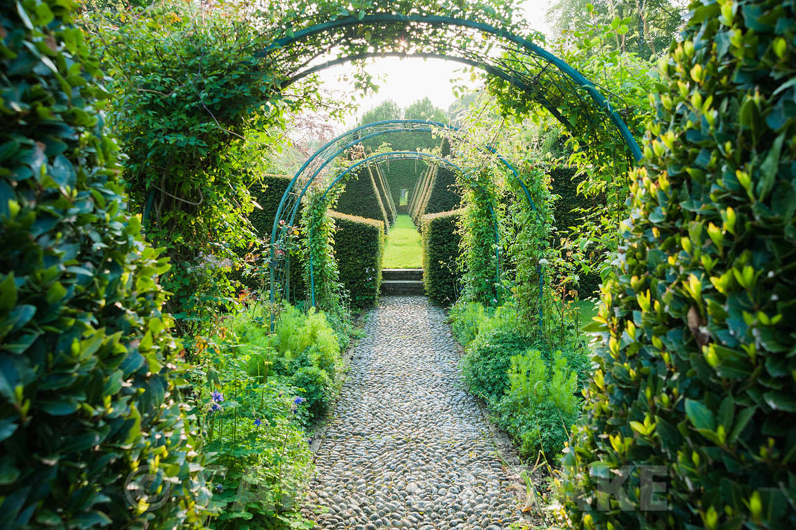 A pebble path leads beneath rose and clematis arches along the garden's central axis between clipped bay,  yew pyramids and f...
