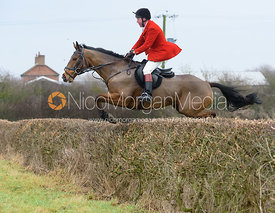 Tom Kingston jumping Hose Thorns - The Belvoir at Long Clawson 10/12