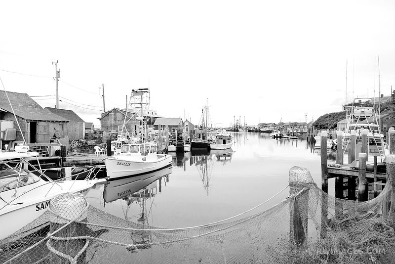 MENEMSHA FISHING VILLAGE CHILMARK MARTHA'S VINEYARD BLACK AND WHITE