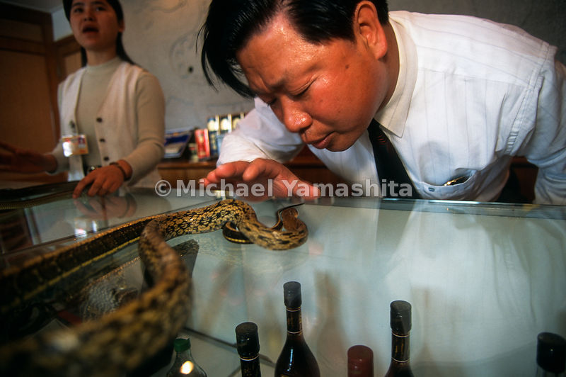 Chin Lung Fei, owner of the Flying Dragon Amusement Park. The park promotes love of snakes - sells snake products - food, med...