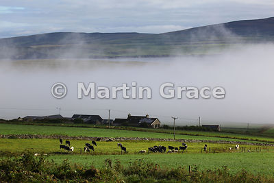 Morning mist in Eynhallow Sound, West Mainland, Orkney, United Kingdom