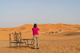 Tourists photographing camels in the Erg Chebbi Sand dunes of the Sahara Desert in Morocco
