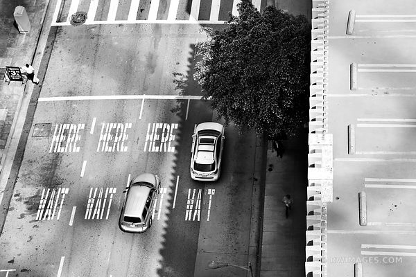 HERE HERE WAIT WAIT LOS ANGELES CALIFORNIA STREET BLACK AND WHITE