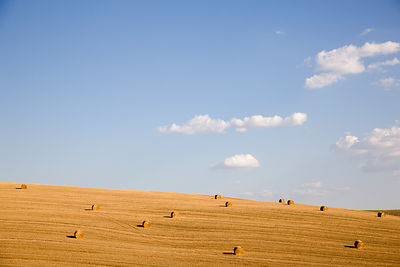 Field with hay rolls in Tuscany