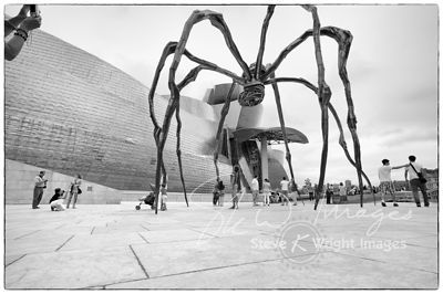 The Guggenheim Museum - Bilbao, Spain