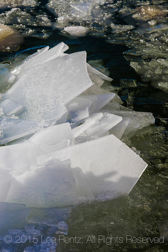 Flat Plates of Shattered and Refrozen Ice in Lake Michigan at Rosy Mound Natural Area