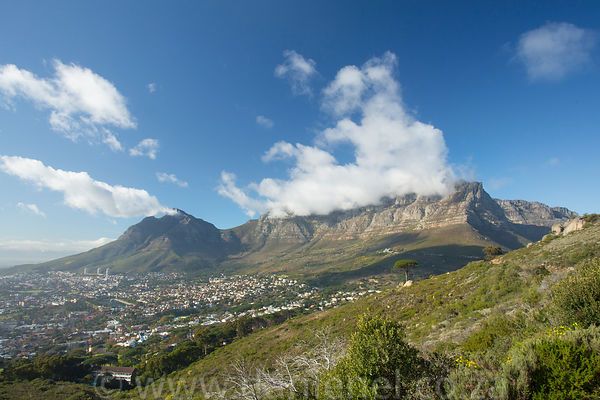 Royalty Free Stock - Cape Town