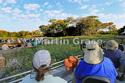 Tourist boat scrum waiting for a Jaguar (Panthera onca) to appear, River Cuiabá, Mato Grosso, Brazil
