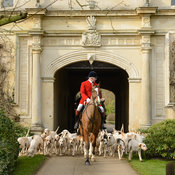 Andrew Osborne and the Cottesmore hounds