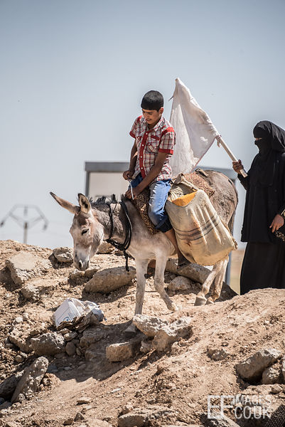 A boy on a donkey followed by a burkha clad woman with a white flag on their way out of Mosul to escape the conflict. Mosul, ...