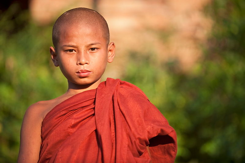 Burmese novice monk