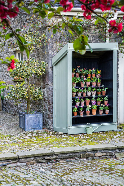 Auricula theatre in the courtyard. Summerdale House, Lupton, Cumbria, UK