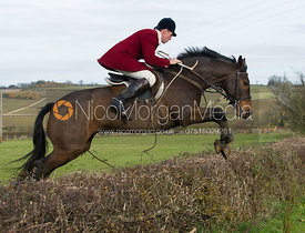 Rowan Cope MFH jumping a hedge at Town Farm