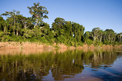 Tambopata River, Peruvian Amazon