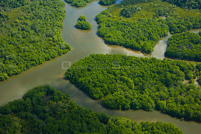 Aerial view of river in lowland rainforest, Rio Sungai Kinabatangan, Sabah, Borneo, Malaysia. 2007