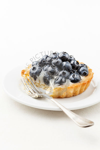 Blueberry tart on white background