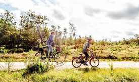 Mother and children biking in Thy, Denmark 3