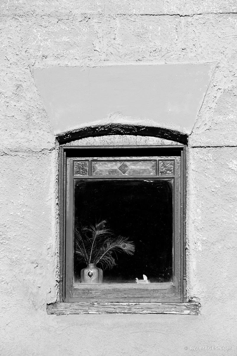 WINDOW VASE PEACOCK FEATHERS ADOBE WALL SANTA FE NEW MEXICO BLACK AND WHITE VERTICAL