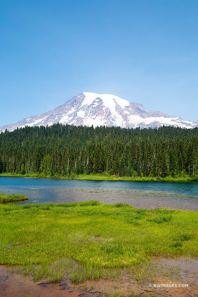 MOUNT RAINIER NATIONAL PARK WASHINGTON STATE COLOR VERTICAL