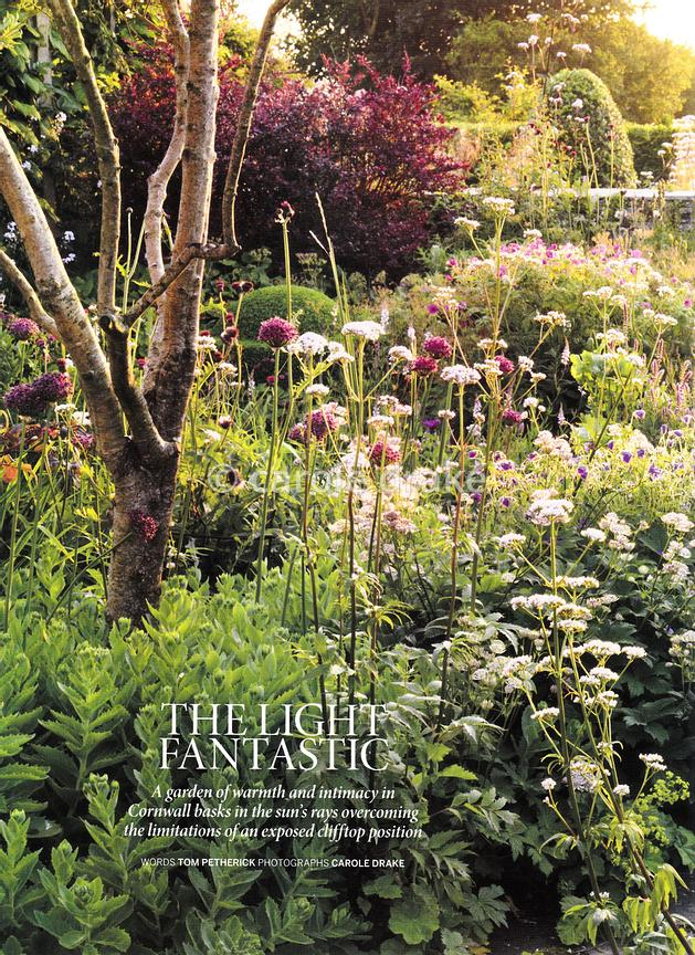Sea View, Gardens Illustrated, July 2018