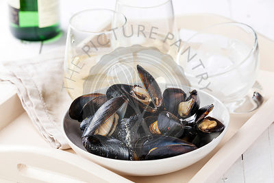 Mussels and clams with white wine
