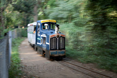 Toy train in the Udaipur city zoo, Rajasthan, India