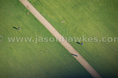 Aerial view of paths in Hyde Park, London