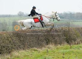 Martin Harley jumping a hedge at Wilson's - The Cottesmore Hunt at Manor Farm