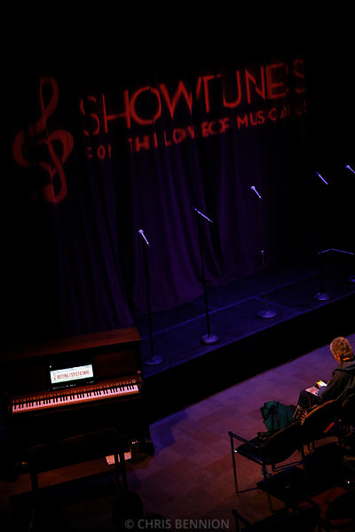 Showtunes-Defying Expectations Cabaret