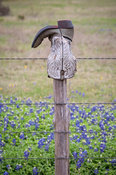 Boot and Fence Post #2