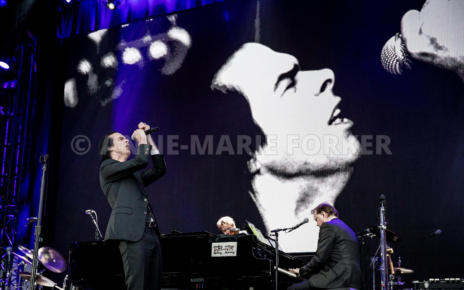 Nick_Cave_-_AM_Forker-7457