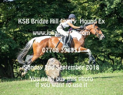 2018-09-02 Bridge Hill Livery Hound Exercise