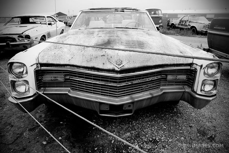 AUTO JUNKYARD ROUTE 66 ILLINOIS BLACK AND WHITE