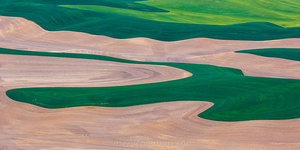 817 Palouse Abstract