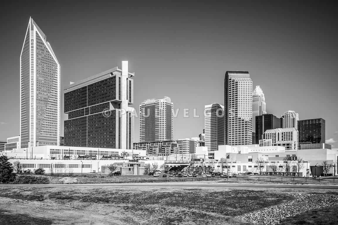 Charlotte Skyline Black and White Picture