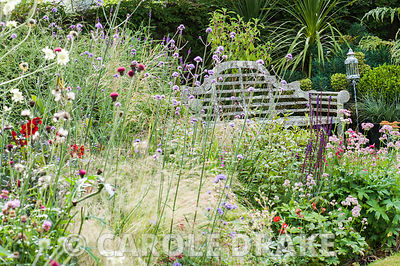 Lower garden with lichen encrusted Lutyens bench surrounded by a pretty mix of grasses and herbaceous perennials including ac...