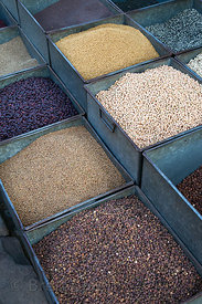 Grains and legumes for sale at a market in Jodhpur, Rajasthan, India