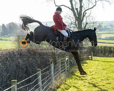 The Cottesmore Hunt at Owston 28/11 photos