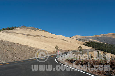 Windy Road in Yellowstone National Park