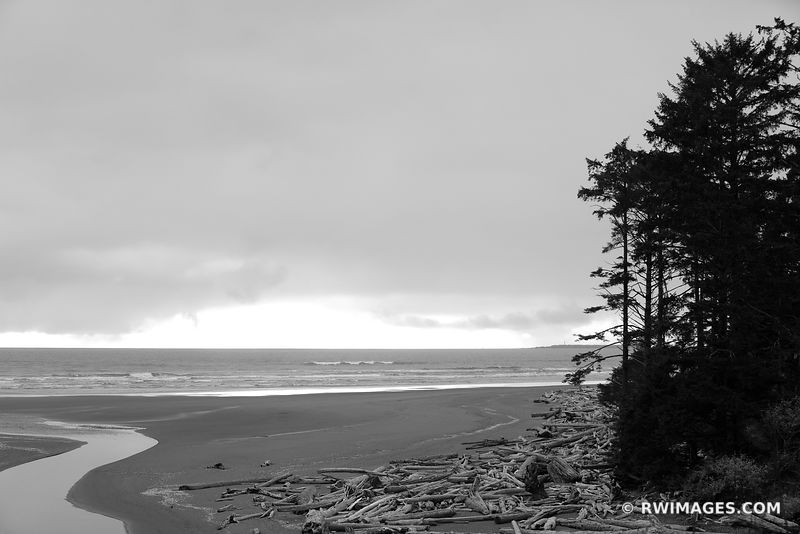 KALALOCH BEACH OLYMPIC NATIONAL PARK WASHINGTON PACIFIC NORTHWEST BLACK AND WHITE