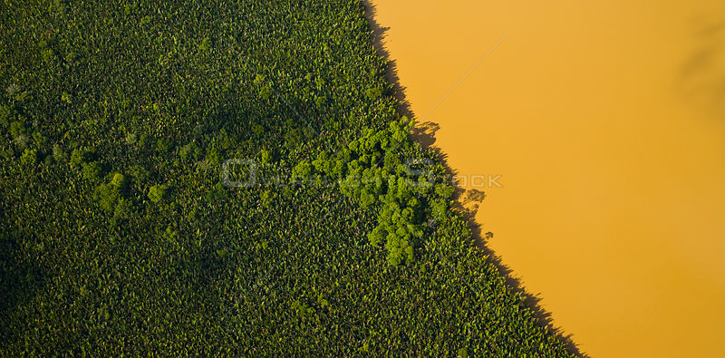 Aerial view of lowland rainforest and Kinabatangan River coloured with mineral deposits, Sabah, Malaysia . 2007