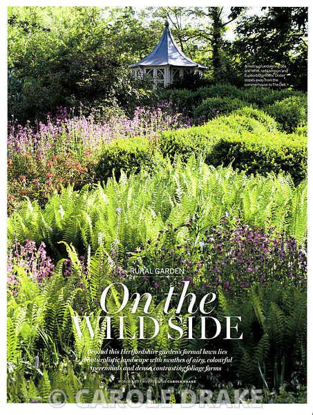 Pine End, Homes and Gardens, May 2016