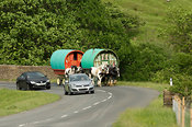 Horse drawn caravan on the road heading to Appleby horse fair. On A683 betwen Sedbergh and Kirkby Stephen, being overtaken by...