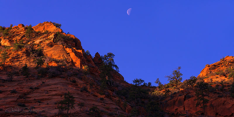 Moon Over Zion