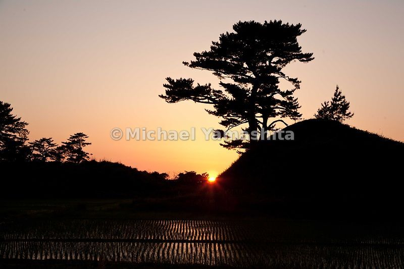 Sunset over Kisakata pine islands. During Basho's time, Kisakata was a bay filled with sea water, much like Matsushima. Water drained away after an earthquake and now rice paddies form a sea of green between remaining 99 islands. MT. Chokai, called Akita Fuji looms in background.