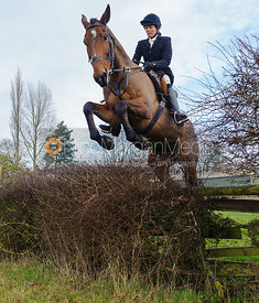 Tricia Ronane jumping the first hedge - Barleythorpe