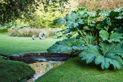 Huge clumps of Gunnera manicata screen the house from the road, here framing a view of a concrete sculpture on the lawn. The ...