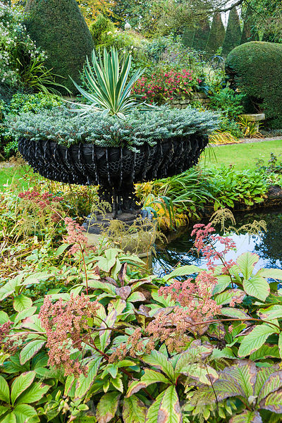 Pond in the Old Orchard with wrought metal basket urn planted with hebe and a variegated yucca surrounded by rodgersias, host...